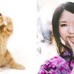 新投票型クイズ第一回「猫VS美女」!本選投票がスタート