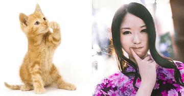 猫VS美女