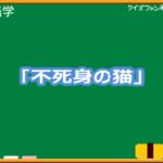 【クイズファンネット】ファイルNo19「10回クイズ 不死身の猫」の【解答】