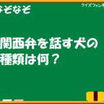 【クイズファンネット】ファイルNo51「なぞなぞ 関西弁を話す犬?」の【解答】