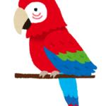 【動物の雑学クイズ】意外と知らない動物のトリビア!まるばつクイズで150問! PART⑥(126~150)