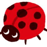 【動物の雑学クイズ】意外と知らない動物のトリビア!まるばつクイズで150問! PART⑤(101~125)